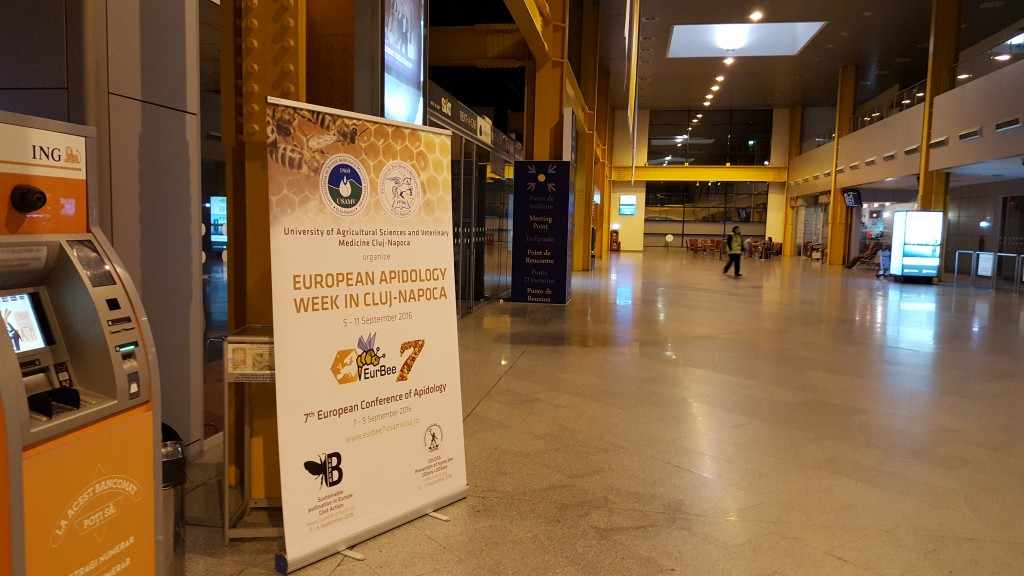 EurBee 7 Meeting point in Airport